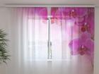 Sifonki-kuvaverho INTRIQUE 240x220 cm ED-100153