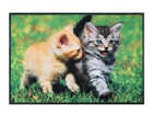 Matto LOVELY CATS 50x75 cm A5-101716