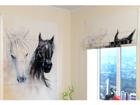 Pimentävä laskosverho AFRICAN HORSES 1 60x60 cm ED-108450