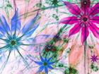 Fleece-kuvatapetti FLOWER SILHOUETTES 360x270 cm ED-109410