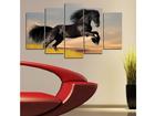 Viisiosainen seinätaulu HORSE I, 100x60 cm ED-116570