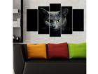 Viisiosainen seinätaulu CATS 100x60 cm ED-116688
