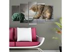 Viisiosainen seinätaulu CATS I, 100x60 cm ED-116690