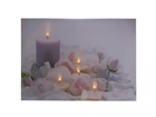 LED taulu CANDLES & ROSE BLOSSOM 30x40 ED-117165