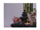 LED taulu FLOWERS & PEBBLES 50x70 cm ED-117175