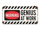 Retro metallijuliste GENIUS AT WORK 10x20 cm SG-118303