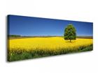 Seinätaulu GREEN TEE 120x40 cm ED-119296