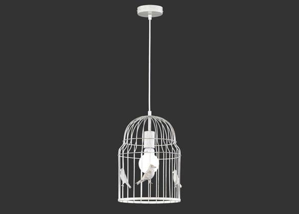 Kattovalaisin BIRDY EW-124749