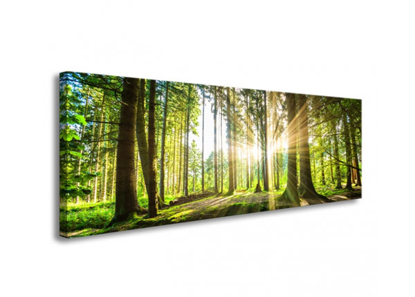 Seinätaulu FOREST IN BACKLIGHT 120x40 cm ED-126285