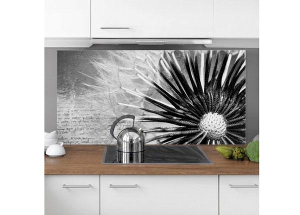 Kuvalasi/ välitilan lasi DANDELION BLACK & WHITE 1, 59x120 cm ED-130143