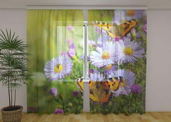 Sifonki-kuvaverho BUTTERFLIES 240x220 cm ED-131439