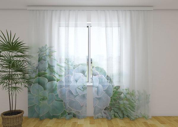 Sifonki-kuvaverho GREEN SUCCULENT PLANTS 240x220 cm ED-131453