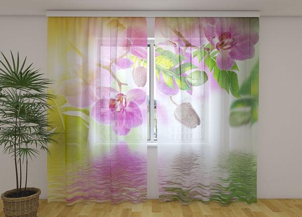 Sifonki-kuvaverho SUMMER ORCHIDS 240x220 cm ED-131508