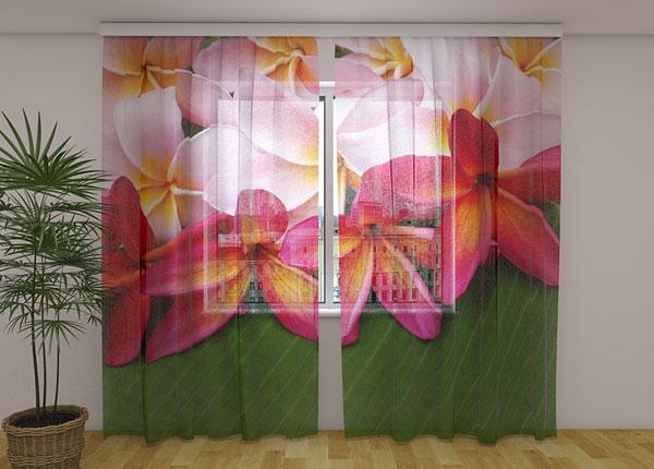 Sifonki-kuvaverho TROPICAL FLOWERS 3, 240x220 cm ED-131510