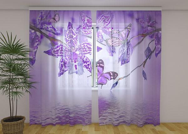 Sifonki-kuvaverho VIOLET ORCHID 240x220 cm ED-131520