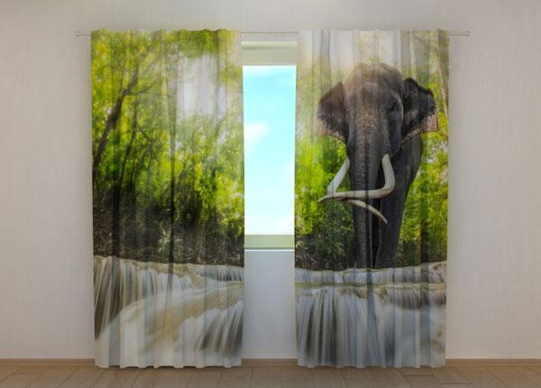 Pimennysverho BIG ELEPHANT 240x220 cm ED-134187