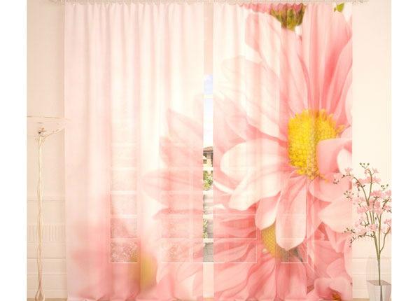Tylliverhot SOFT FLOWERS 290x260 cm AÄ-134287