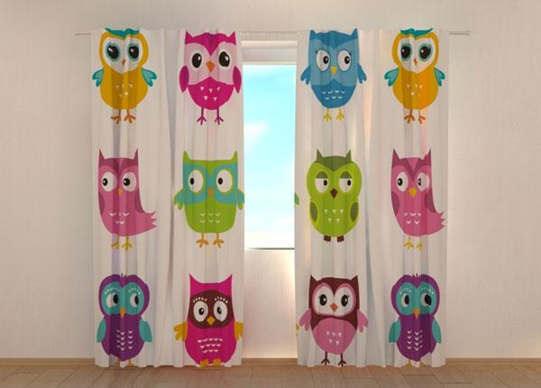Puolipimentävä verho LOVELY OWL 1 ED-134686