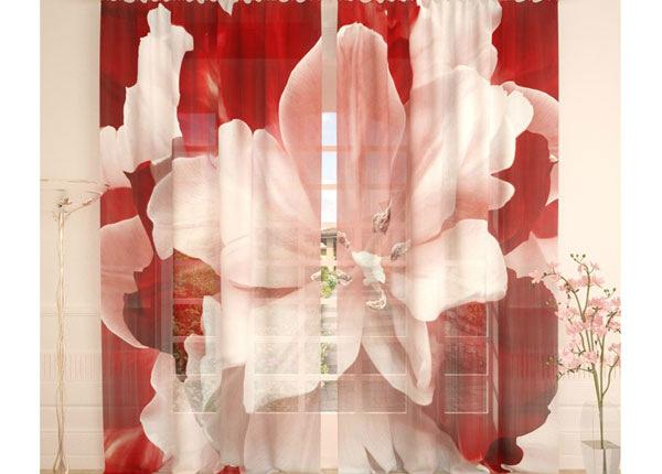 Tylliverhot RED WHITE TULIP 290x260 cm AÄ-138218