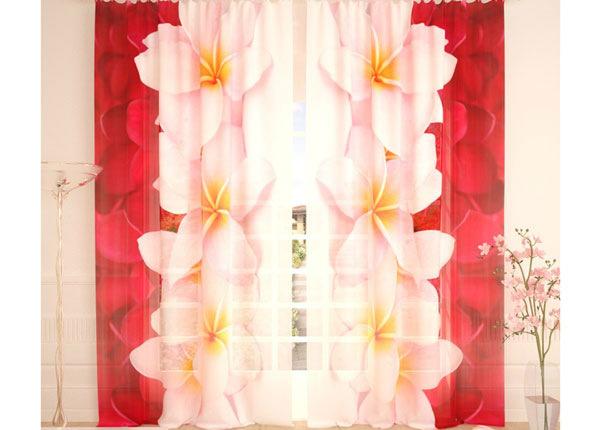 Tylliverhot PLUMERIA COLLECTION 290x260 cm AÄ-138228