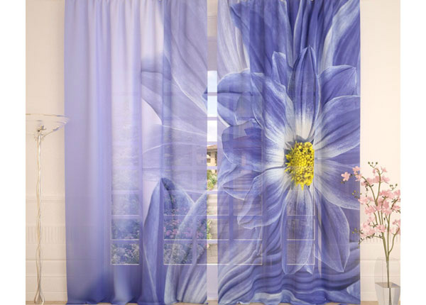 Tylliverhot BLUE FLOWERS 290x260 cm AÄ-138229