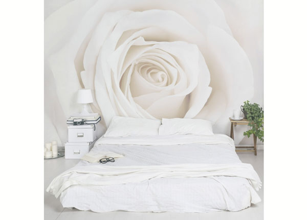 Fleece-kuvatapetti PRETTY WHITE ROSE ED-138513