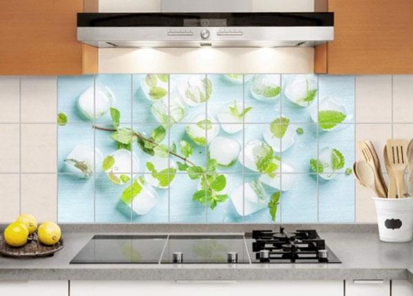 Tarrat seinälaatoille ICE CUBES WITH MINT LEAVES 60x120 cm ED-139700