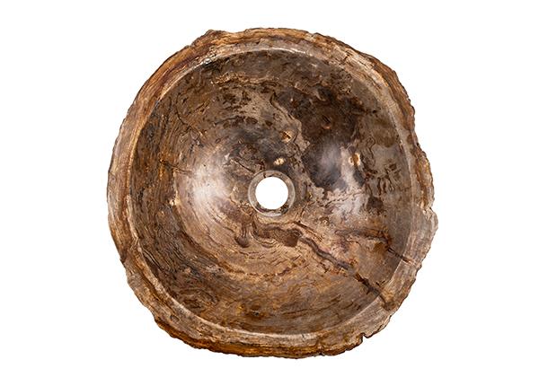 Pesuallas kivettynyttä puuta GM-140010