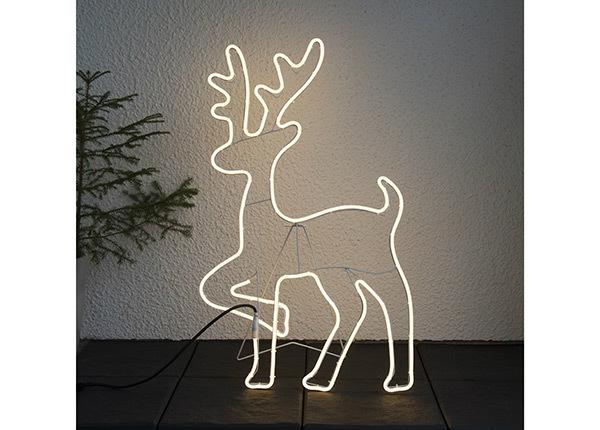 LED koriste NEOLED AA-142891