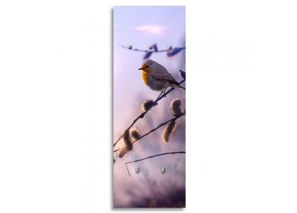Seinänaulakko BIRD