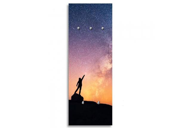 Seinänaulakko REACHING FOR THE STARS
