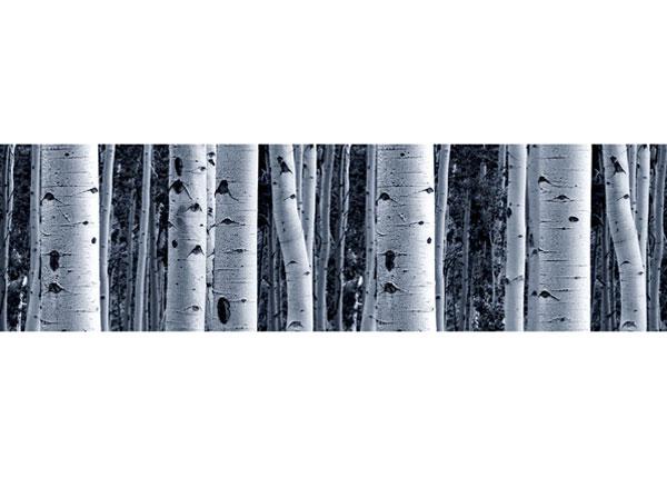 Seinätarra Birch 14x500 cm