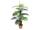 Palmu 120 cm DA-44710