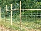 Eläinverkko 1,5x50 m PO-54707
