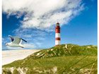 Kuvatapetti LIGHTHOUSE IN DUNES 300x280 cm ED-64861