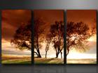 Kolmeosainen seinätaulu PUUT ED-67565