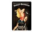 Retrotyylinen metallijuliste HARLEY-DAVIDSON BAKER BABE 20x30 cm SG-68154
