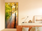 Kuvatapetti FOREST LIGHTS 100x210 cm ED-76726