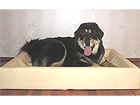 Koiranpeti 80x100 cm OL-8546