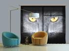Fotoverho BLACK CAT 280x245 cm ED-87050