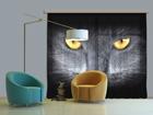Puolipimentävä fotoverho BLACK CAT 280x245 cm ED-87358