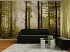 Kuvatapetti EARLY WOOD 360x254 cm ED-88028