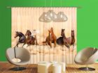 Fotoverho HERD OF HORSES 280x245 cm ED-95864