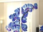 Puolipimentävä paneeliverho BLUE ORCHIDS 240x240 cm ED-97573