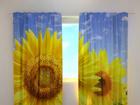 Läpinäkyvä verho FLOWERS ON THE SUN 240x220 cm ED-97955