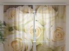 Sifonki-kuvaverho CHAMPAGNE ROSES 240x220 cm ED-99929