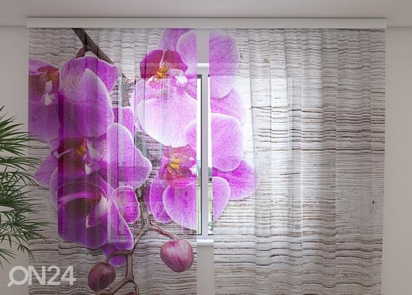 Sifonki-kuvaverho ORCHIDS AND TREE 2, 240x220 cm ED-100163