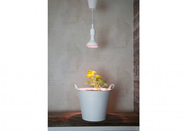LED valaistus kasveille AA-110705
