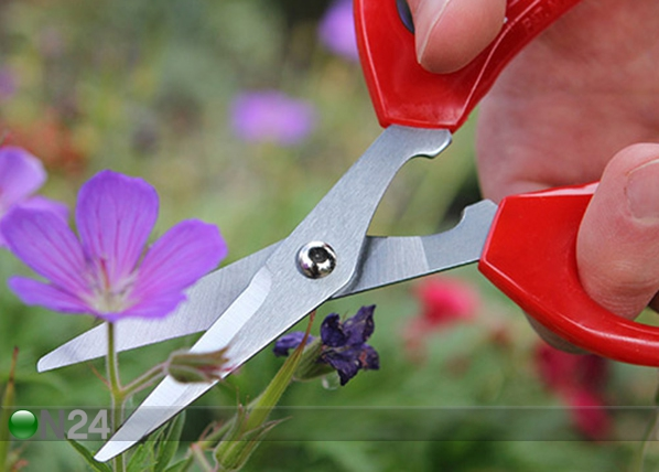 Puutarhasakset PR-129949