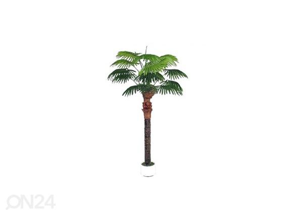 Palmu 210 cm DA-44709